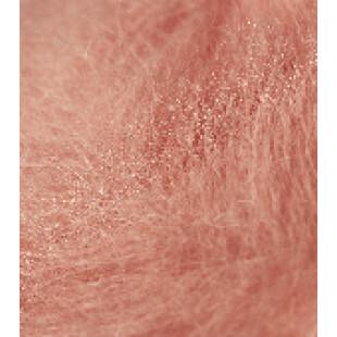 Anisia coral
